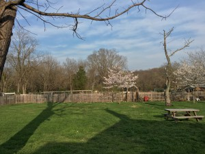 Three Graces Farm in Maryland